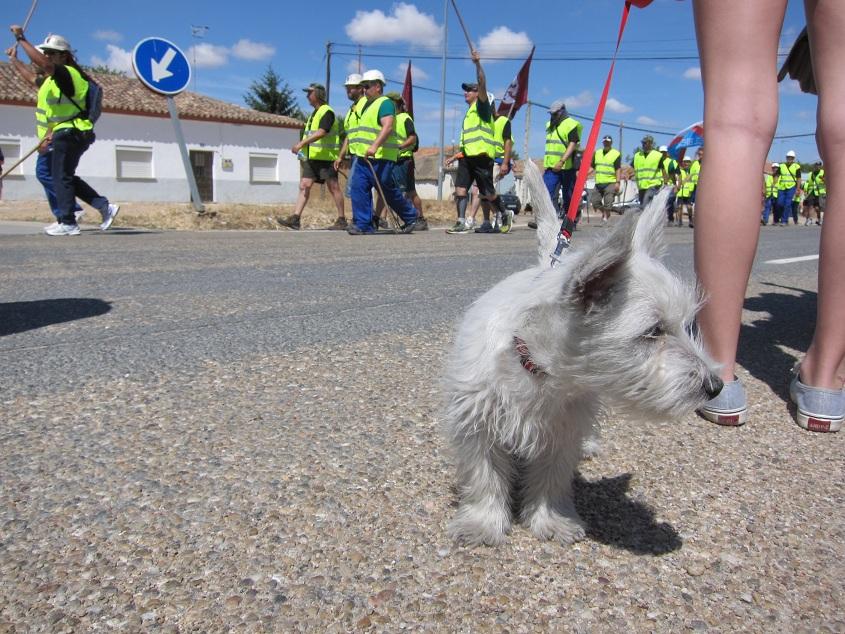 """IMG 5247 copia Día 10. La marcha del carbón completa la mitad de su reto """"por el camino de las cabras"""""""