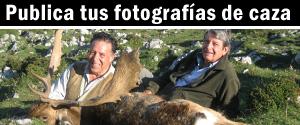 Publica tus fotografías de caza y pesca - El Comercio Digital